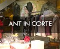 ant-in-corte